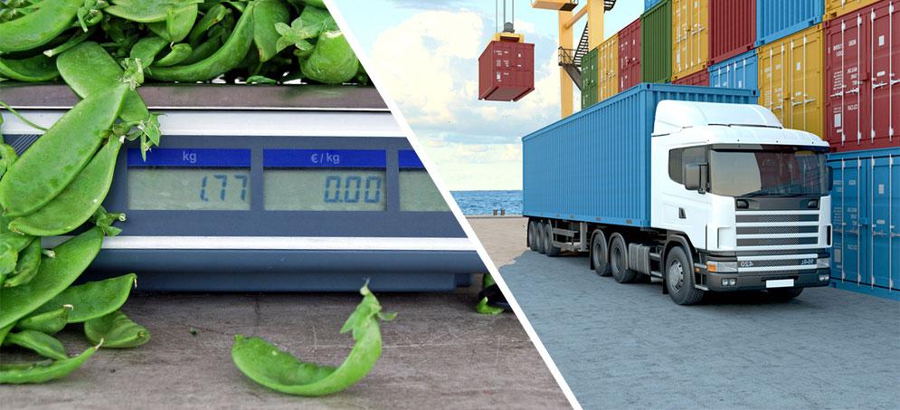 Instruments de pesage de 1mg à 100 tonnes